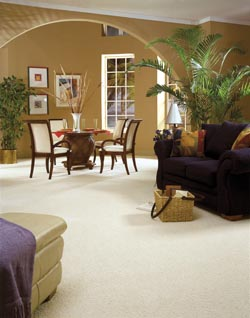 waterproof carpet flooring